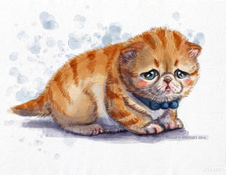 The Saddest Kitten by Art-of-Sekhmet