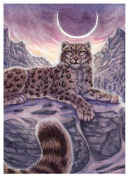 Solstice by Art-of-Sekhmet