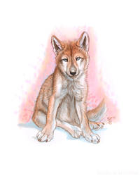 Wolf Pup by Art-of-Sekhmet