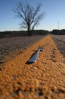 Fork in the Road by bluefishrun