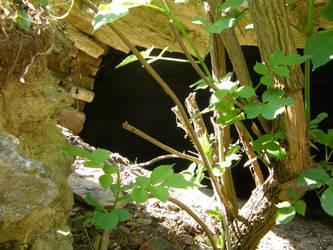 Pajstun - 10 - A Hole by Gwathiell