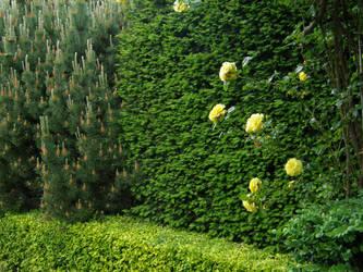 Arboretum - Green Wall by Gwathiell