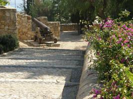 Spain T38 Down the path by Gwathiell