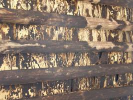 Spain W8 Wooden Ceiling by Gwathiell
