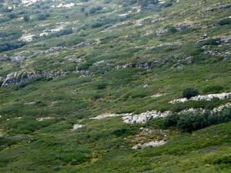 Spain W9 Green hills by Gwathiell
