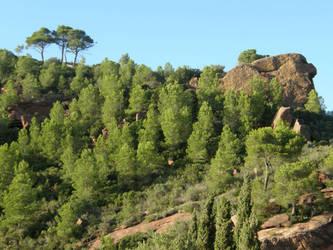 Spain Sa45 Hill forest II by Gwathiell