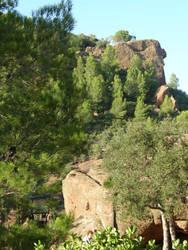 Spain Sa47 Hill forest III by Gwathiell