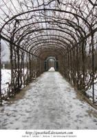 Schonbrunn - Arch by Gwathiell