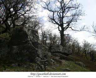 Velka Skala - Rocks and trees by Gwathiell