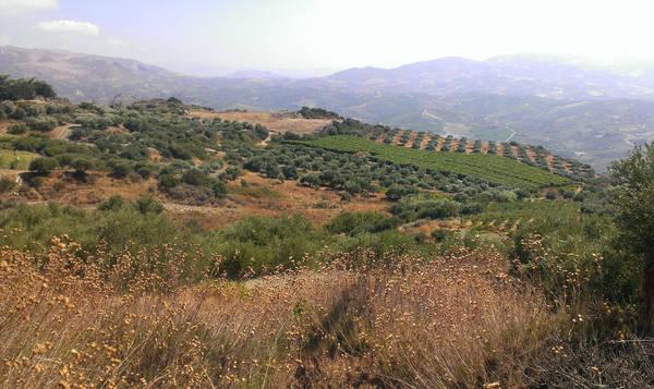 Crete - Land 1 by Gwathiell