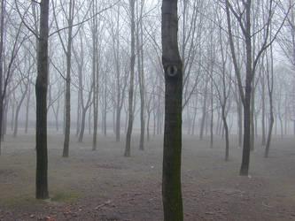 Fog - 02 by Gwathiell