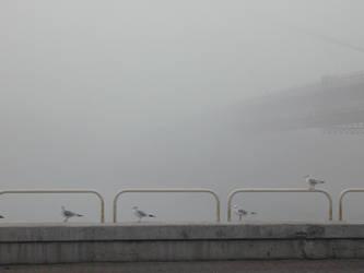 Fog - 05 by Gwathiell