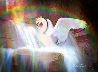 Landing on a Rainbow by Elsapret