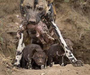 Mom's Burden by MorkelErasmus