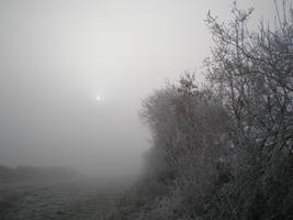 moon and mist by krokette