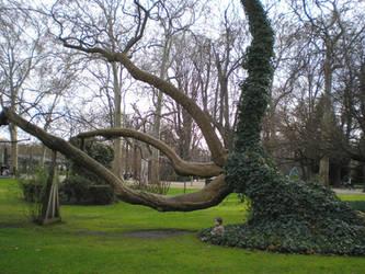 l'arbre et l'enfant by krokette