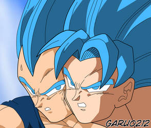 Son Goku and Vegeta SSJBlue by garu0212