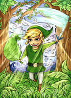 Link - The Wind Waker HD by Paprikoo