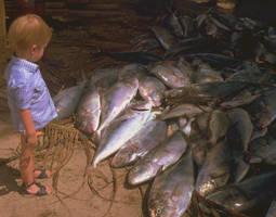 Le jeune homme et les poissons by ElGroom