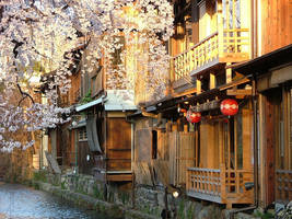 Cherries in Gion by calger459