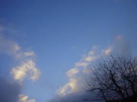 X-Mas day sky shot IV by Arnax