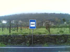 Paragem Verdinha do BUS by Arnax