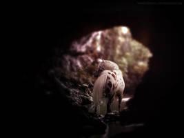 Hidden by Idhrill