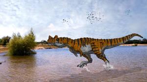 Ceratosaurus by kingrexy