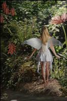 Fairy Dust by Mortal-Cyn
