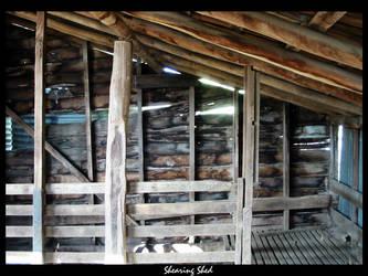 Shearing Shed by john0452