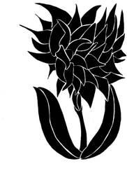 Barbed Flower by kittyauroria