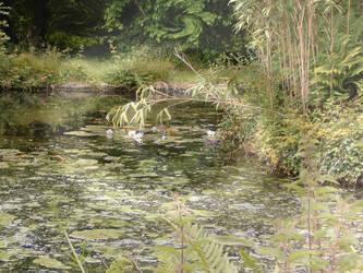 Uzumaki Pond Wallpaper by AntonChanning