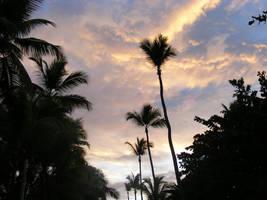 Trip to Hispaniola 8 by cypher7