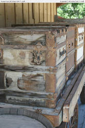 Old trunk 2 by RoonToo
