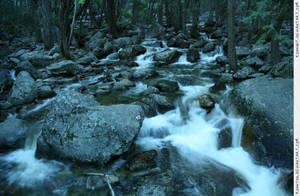 Yosemite 6 Bridalveil Creek by RoonToo