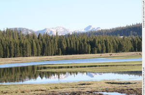 Tuolumne Meadows 1 by RoonToo