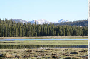 Tuolumne Meadows 3 by RoonToo