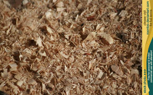 Sawdust by RoonToo