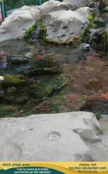 Aquarium Tide Pool 01 by RoonToo