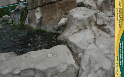 Aquarium Tide Pool 03 by RoonToo