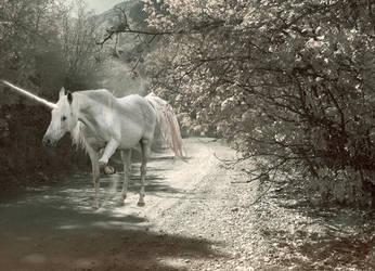 Charlie the unicorn by myhardcorepony