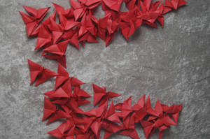 Origami Butterflies 2 by themuseslibrary