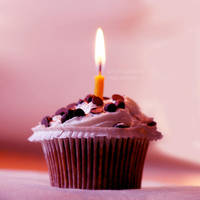 CupCake  .  .  . by Miss-Photo