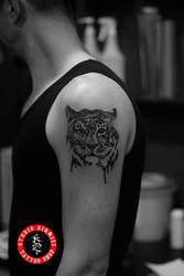 Tiger Dovme by mertkanongun