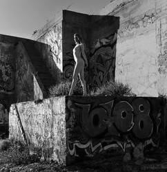 Desolation (Film) by Syboro