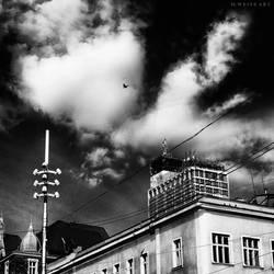 monochrome by MWeiss-Art