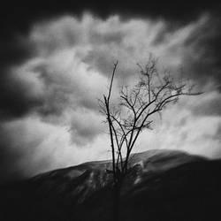 loneliness by MWeiss-Art