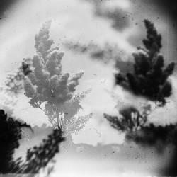 dust by MWeiss-Art