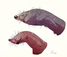 Predator heads by Iopac