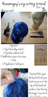 Awesomeguy's Wig Cutting Tutorial Part 1 by shisukoisa